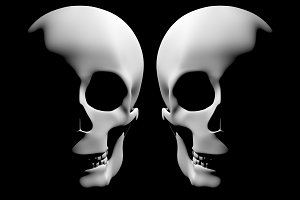 two skulls in the dark