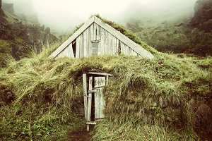 Wooden house isolated with grass in