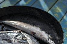 Raw fish. Sea bream,