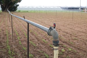 Agriculture watering tubes