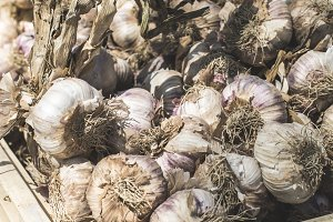Braided dry garlic on the market