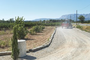 Tractor and vineyards.