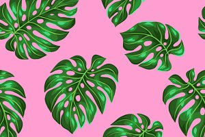 Pattern with monstera leaves.