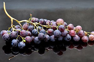 black and red grapes bunch