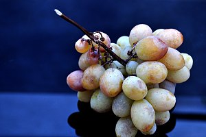 white grapes bunch