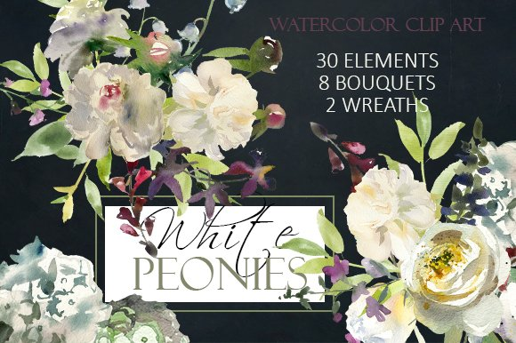 Watercolor white flowers clipart illustrations creative market mightylinksfo