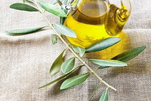 olive oil and branch with leaves