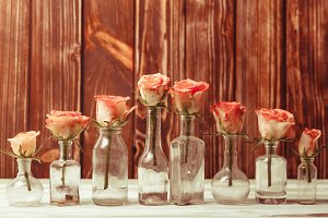 Roses in bottles