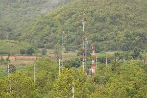 Telecommunications towers in forest
