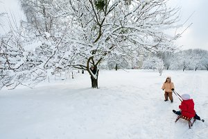 Children play in winter park