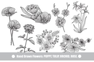 41 Hand Drawn Decorative Flowers Set