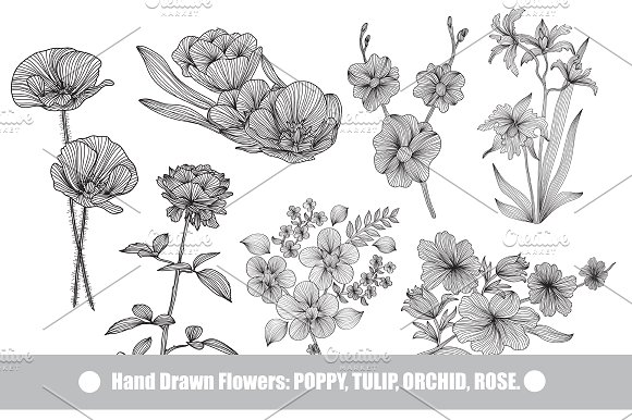 41 hand drawn decorative flowers - Decorative Flowers