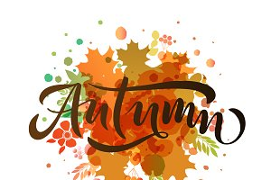Autumn Hand Drawn Typography