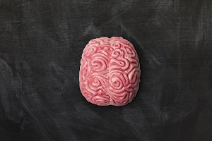 Brain on a blackboard