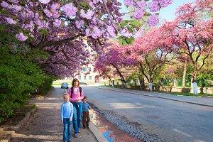Happy family in spring park
