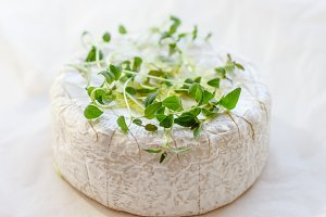 Camembert with thyme
