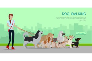 Dog Walking Banner