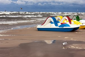 Gulls and pedal boats. Baltic
