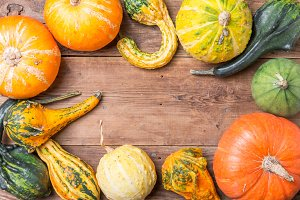Autumn  frame from decorative Pumpkins