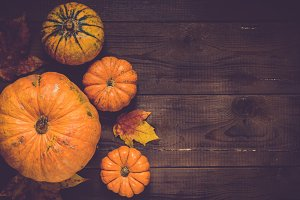 Pumpkins for Thanksgiving day