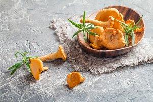 Bowl of chanterelle mushrooms