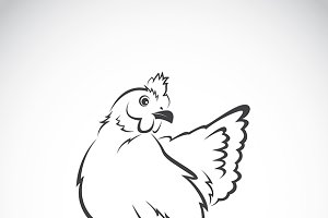 Vector image of chicken