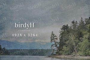 Rainy day landscape background