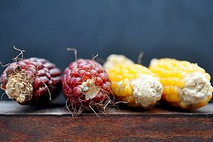 hairy ears of corn with bright beads