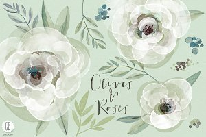 Watercolor roses and olive