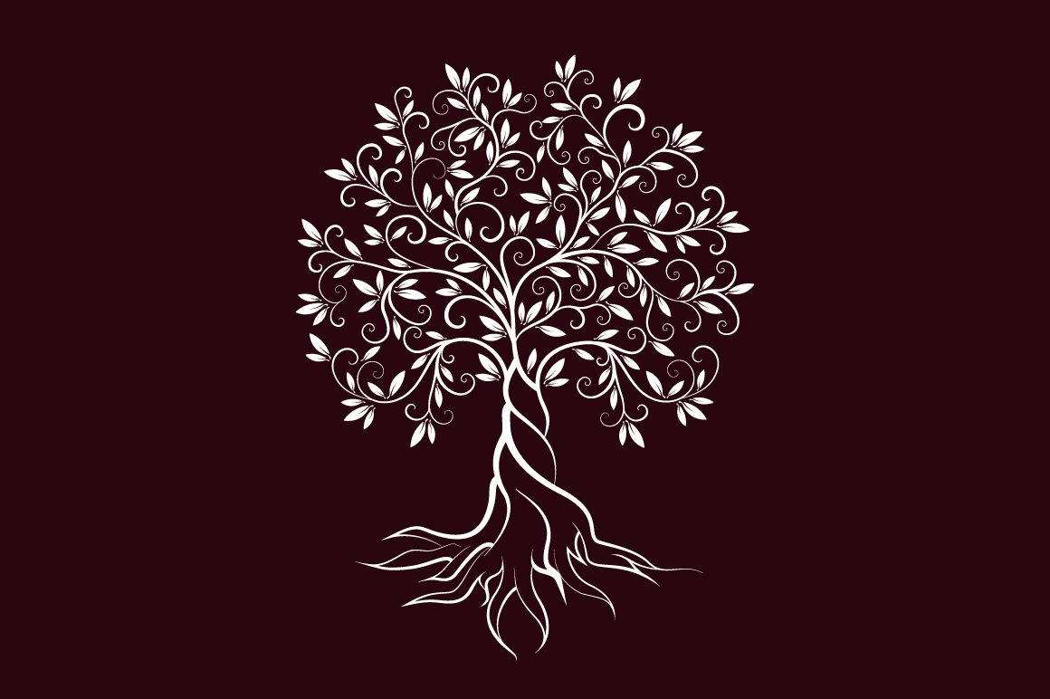 Vector Illustration Tree: Olive Tree Vector Logo Concept