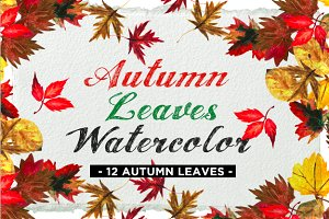 Autumn Leaves Watercolor Icons
