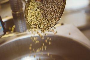 Coffee Roaster Elaboration Process