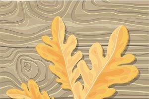 Oak leaf on Wooden