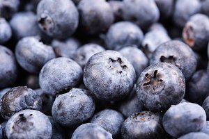 Fresh ripe blueberries macro shot, fruit background