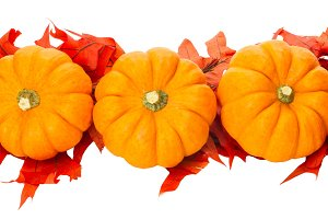 Fall border or element with pumpkins