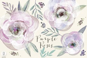 Watercolor purple roses and leaves