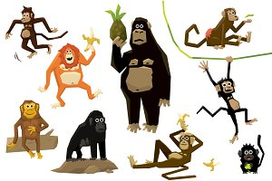Monkeys in different poses