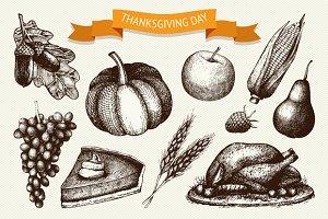 Thanksgiving day illustration set