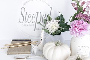 Styled Stock Photo white pumpkin