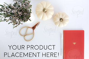 Orange/red notebook, pumpkins, flowe