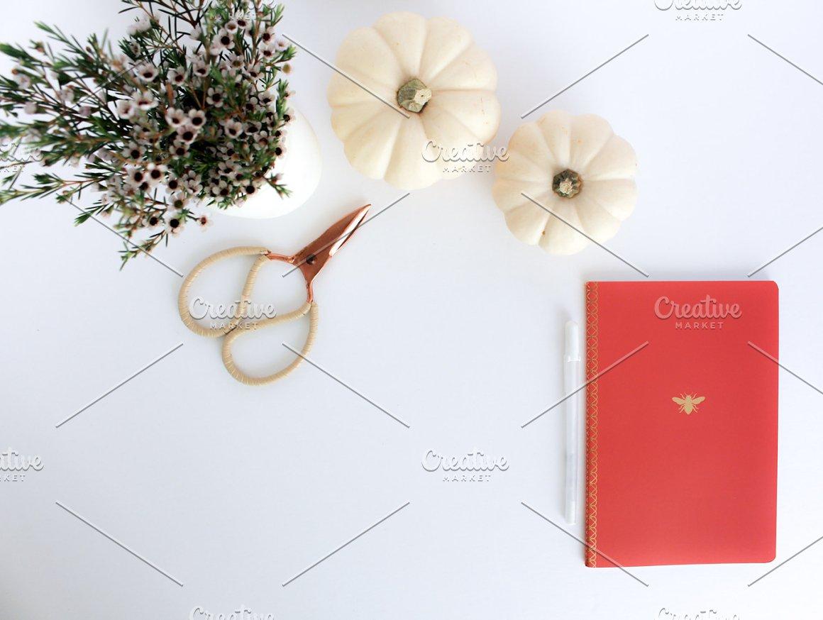Orange/red notebook, pumpkins, flowe