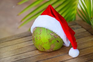 Tropical picture of coconut in Christmas red hat palm leaves