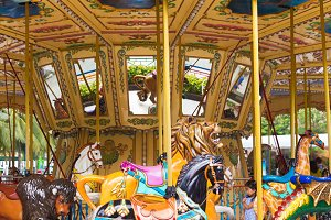 Pretty carousel adventure amusement park