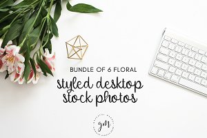 Florals | 6 Stock Image Bundle