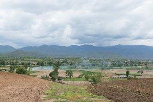 Arable farming rice.
