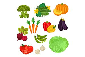 Farm vegetables isolated flat icons