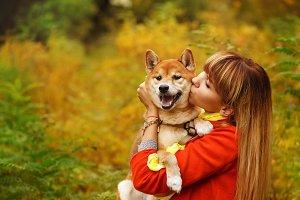 Girl kisses a Shiba Inu dog