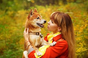 Girl looks at the Shiba Inu dog