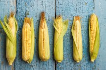 The line of raw corn on the old blue boards