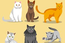 Cute cats with different colored fur